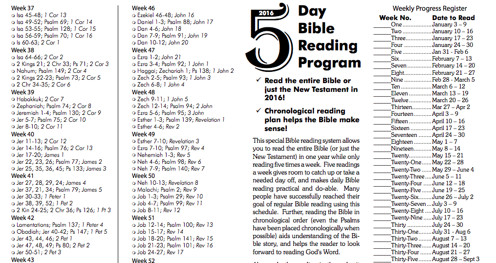 image relating to Printable Bible Reading Plan for Beginners titled Bible-Looking at Dan werthman